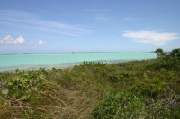 Andros Privatinsel, Insel, Bonefish Cay, Bahamas